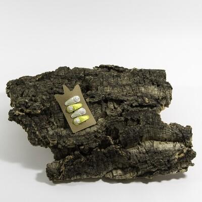 Klikklakspeld 35 mm beige-geel met wit roosje (4 stuks per set)