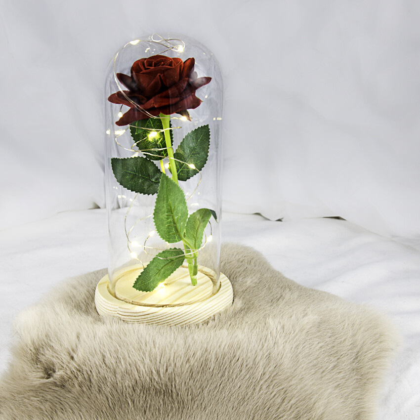Roos onder stolp met  LED verlichting