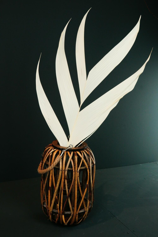 Palmblatt | Weiß