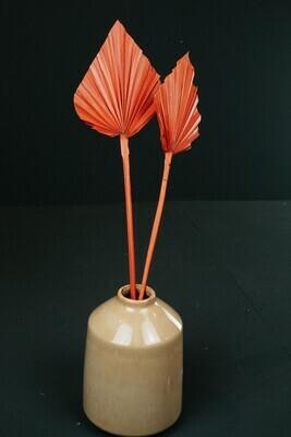 Palm-Speer | Orange