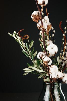 Baumwolle | Olive