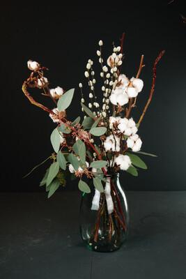 Baumwolle | Eukalyptus