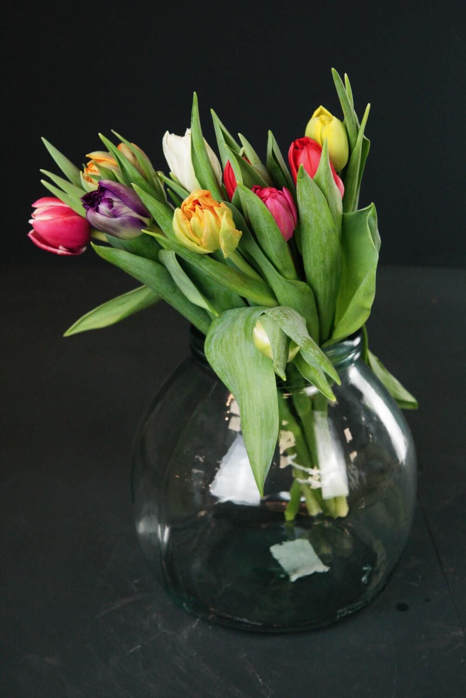 Tulpe | Mix gefüllt