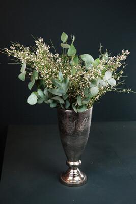 Ginster & Eukalyptus