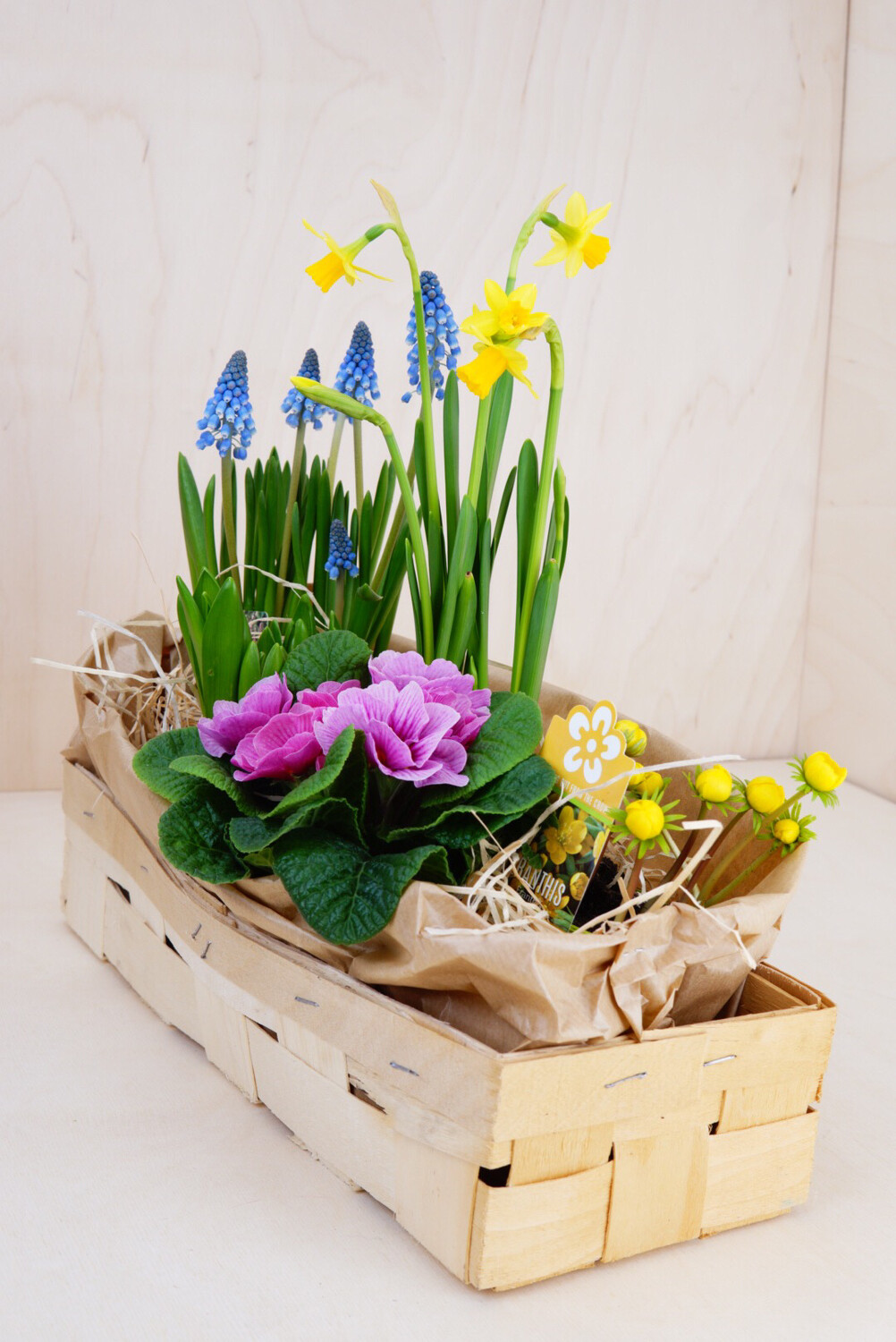 Frühling in a Box | Medium