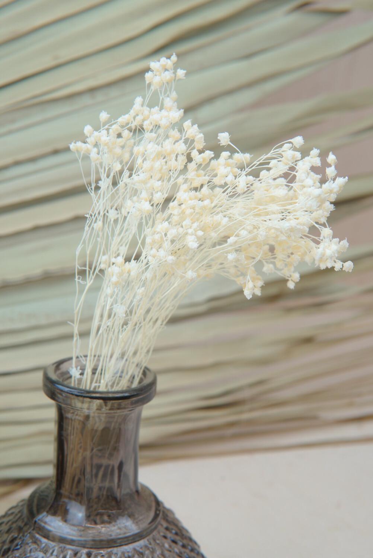 Broom Bloom | Weiß