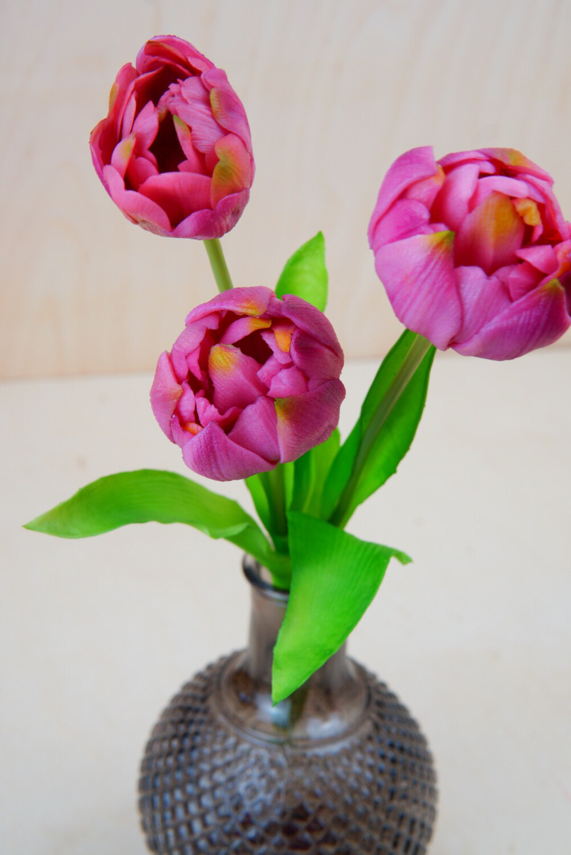 Tulpe | 3er | Lila