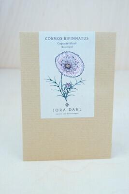 Kosmea 'Cupcake Blush' | Blumensamen