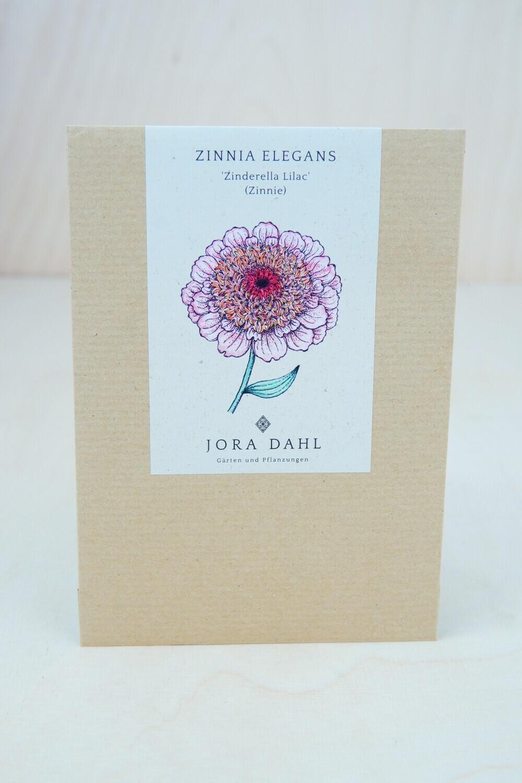 Zinnie 'Zinderella Lilac'   Blumensamen