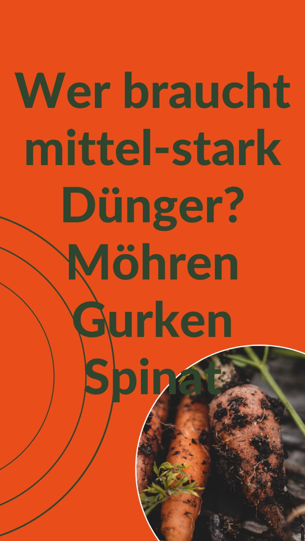 Mittel-Stark-Zehrendes Gemüse