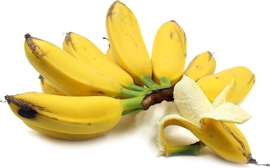 Banana - Dwarf Orinoco