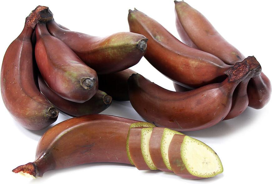 Banana - Dwarf Jamaican Red
