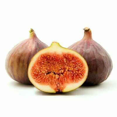 Figs - Brown Turkey