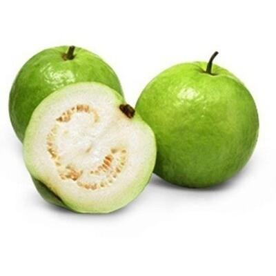 Guava - Tropic White