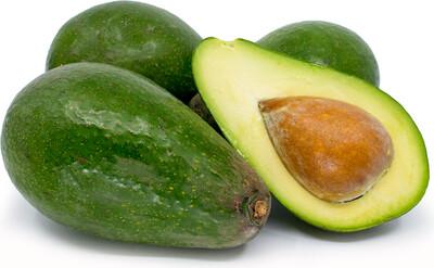 Avocado - Zutano (Type B)
