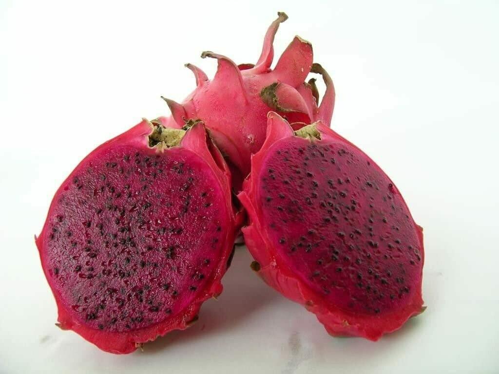 Dragon Fruit - Red