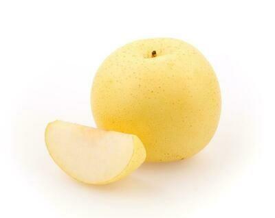 Asian Pear – 20th Century