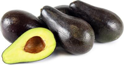 Avocado - Stewart (Type A)