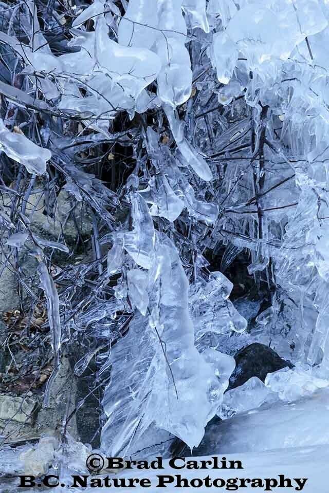 Ice 20191