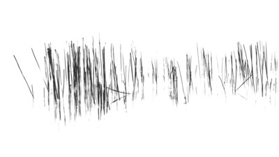 Swamp Code