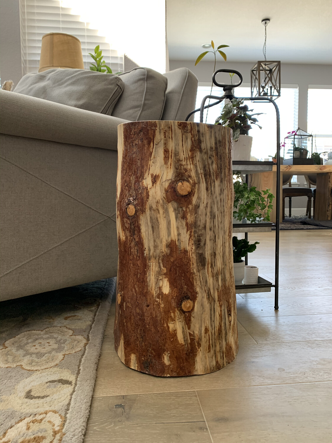 Beetle Kill Stump End Table
