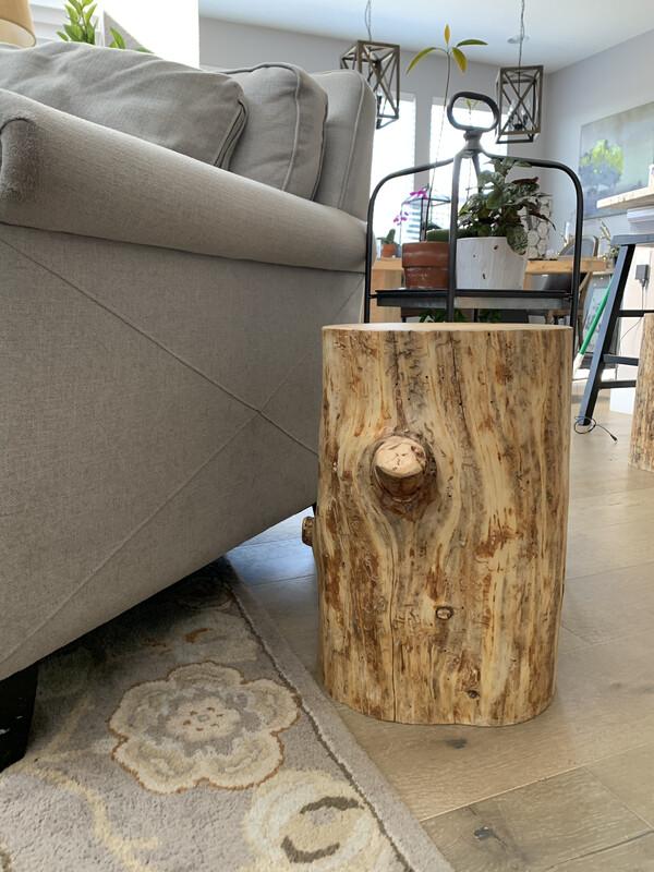 Beetle Kill Stump Seat
