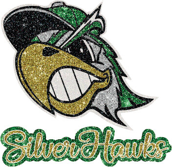 Ladies Silver Hawks Glitter Logo - YOUR CHOICE OF GARMENT!