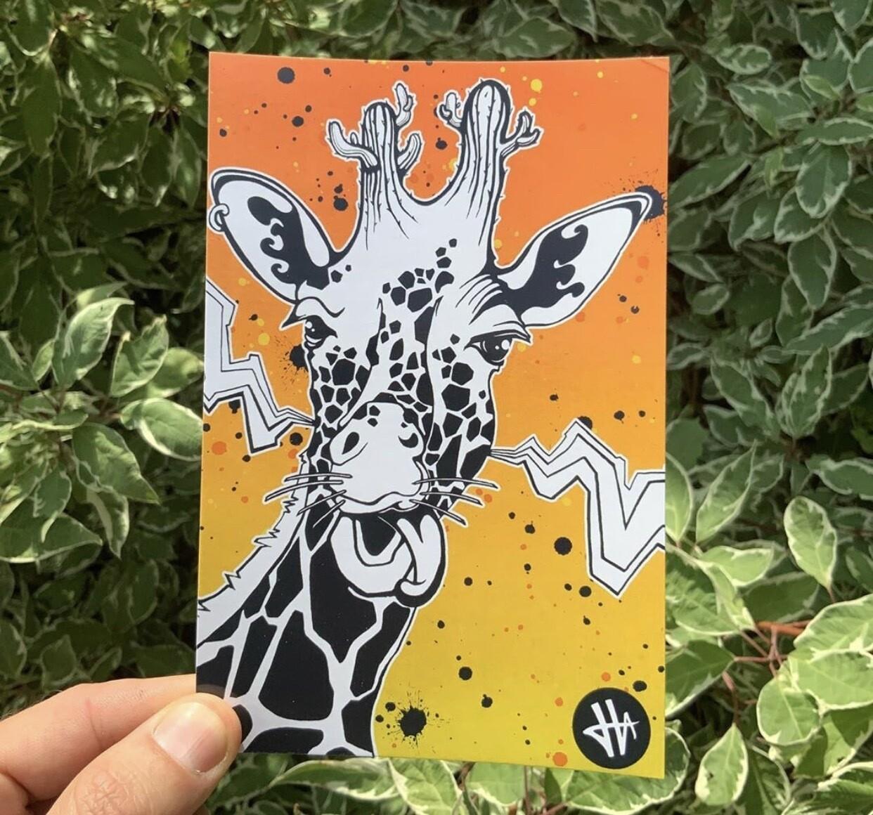 Heilig Art: Giraffe- 5pk Postcards