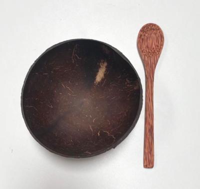 Coconut Shell Bowl by Huski Home