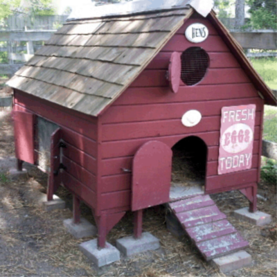New England Chicken Coop Plan - Instant Download