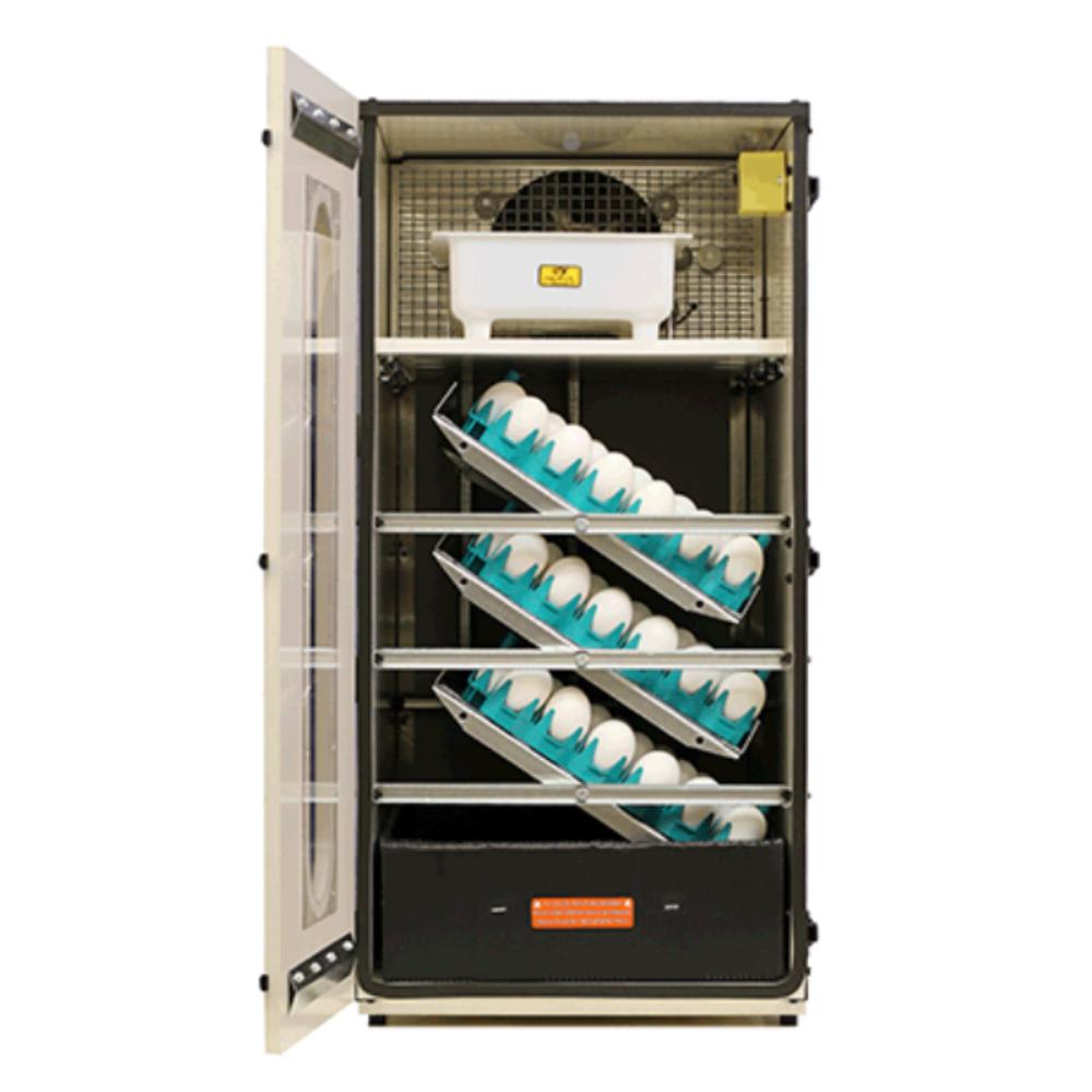 GQF 1502 Digital Sportsman Cabinet Style Incubator