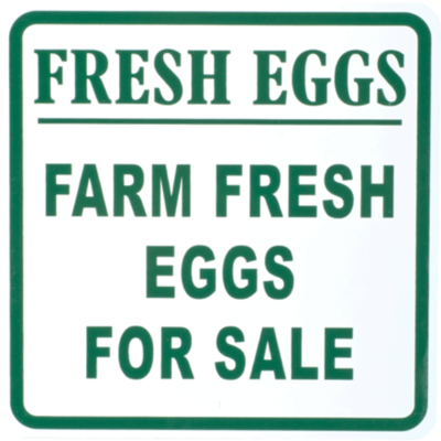 Fresh Eggs | Farm Fresh Eggs for Sale Metal Sign