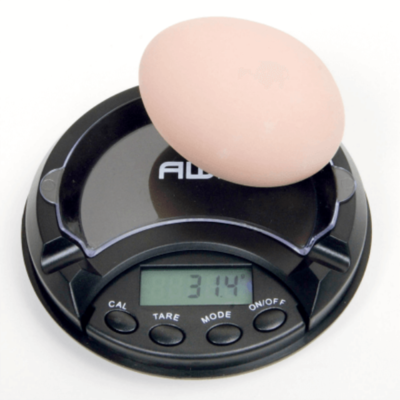 Digital Egg Scale