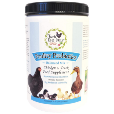 Fresh Eggs Daily Probiotics 16-ounce