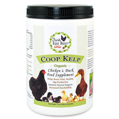 Fresh Eggs Daily Coop Kelp, 16-Ounce