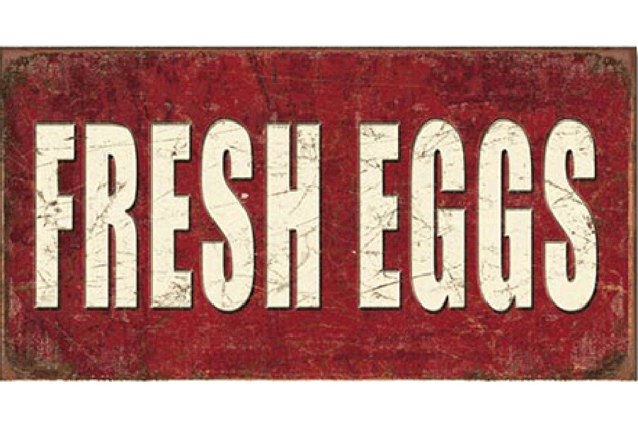 Rustic Tin Fresh Eggs Sign