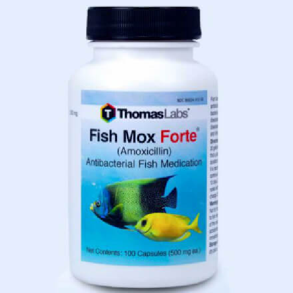 Fish Mox Forte, 100 count