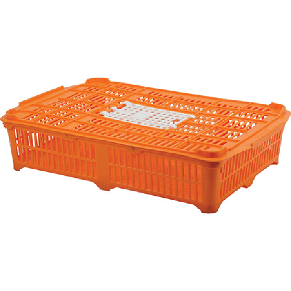 Quail Transportation Crate