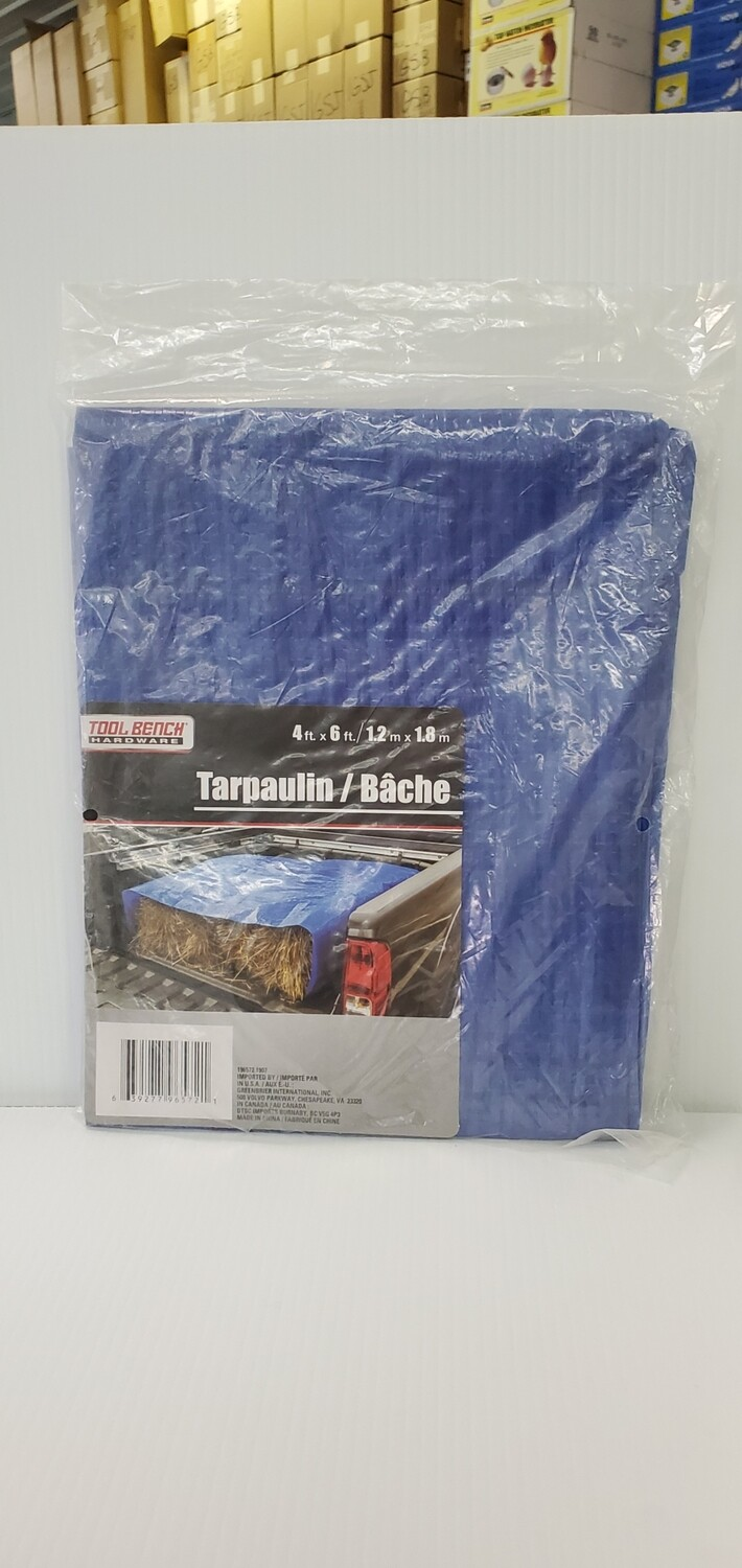 Light Duty Tarp 4' x 6'