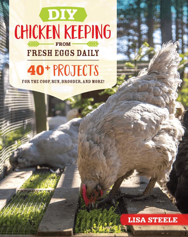 DIY Chicken Keeping