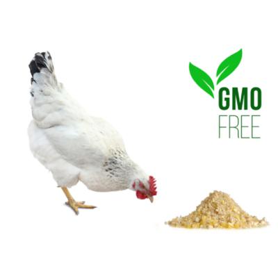 Non-GMO Scratch Grains