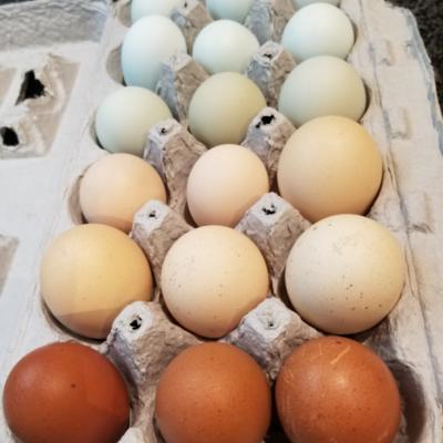 Employee Flat of Eggs, 30 Count