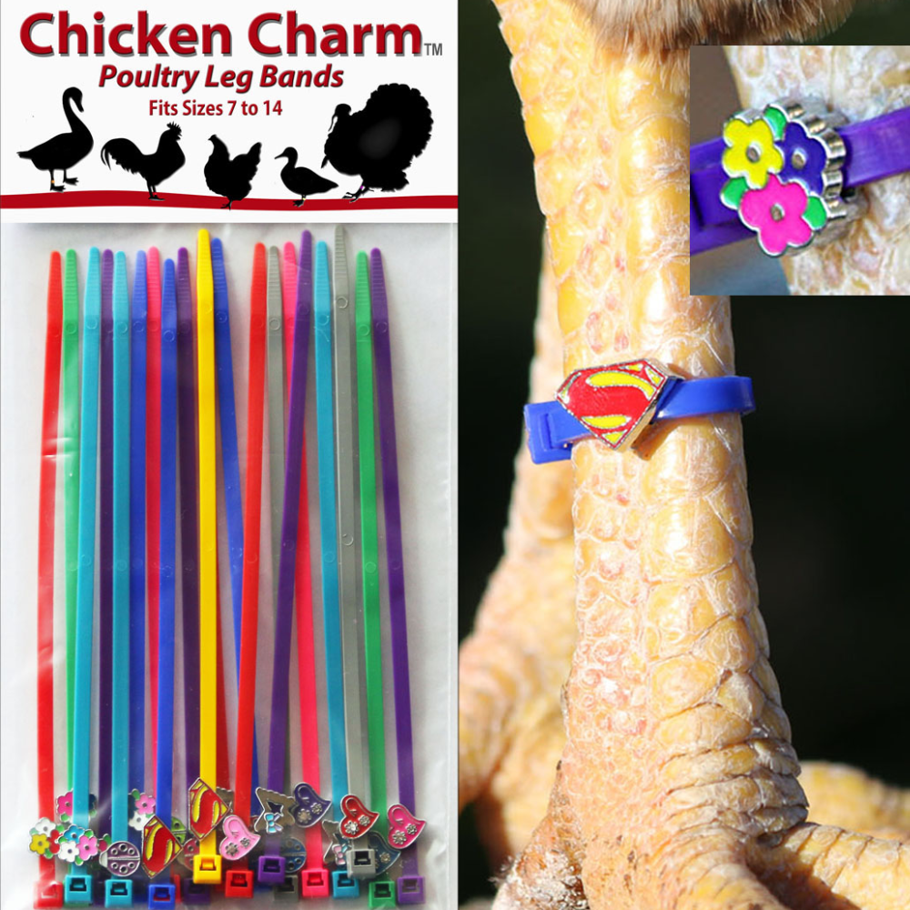 Chicken Charms, 20 Pack