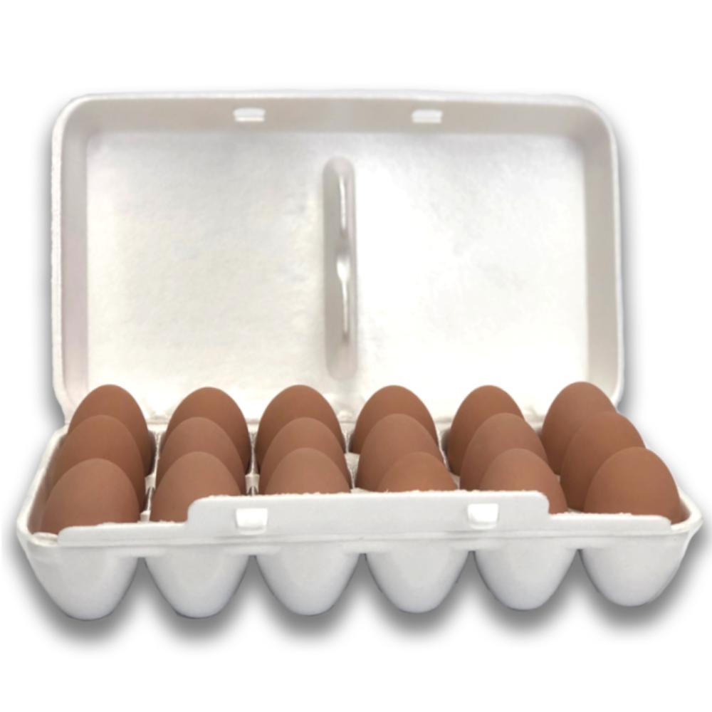 18-Egg Blank Styrofoam Egg Carton