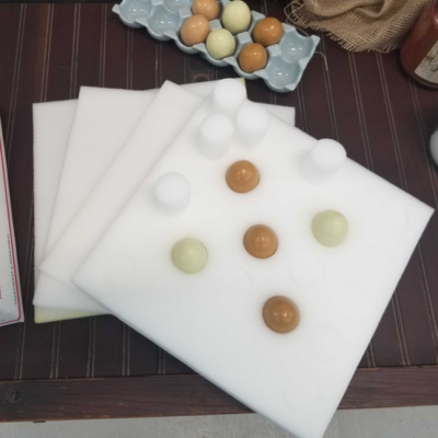 Egg Shipping Foam Kit