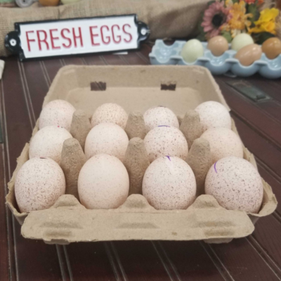 12-Egg Jumbo/Duck Vintage Style Egg Carton