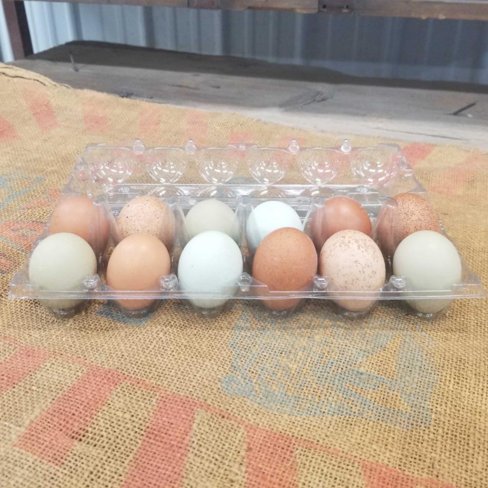 Clear Plastic Egg Cartons