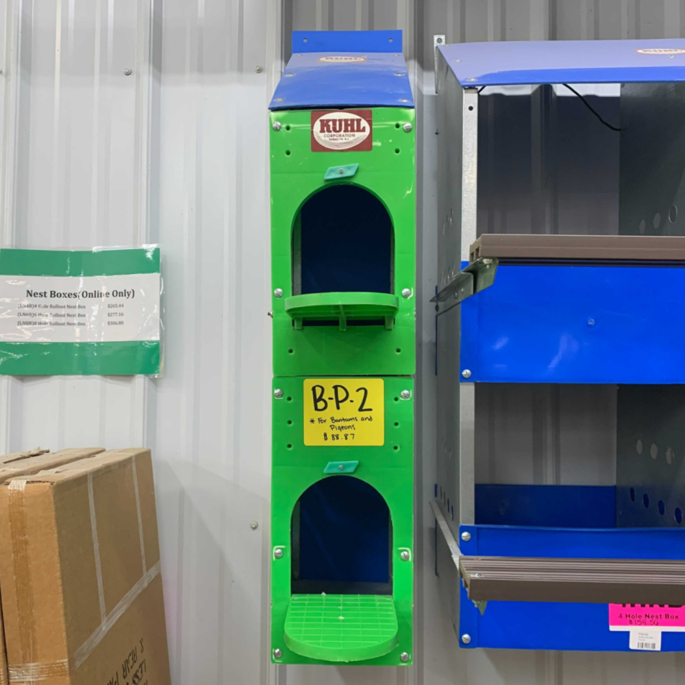 2-Hole Bantam and Pigeon Nest Box - Discontinued
