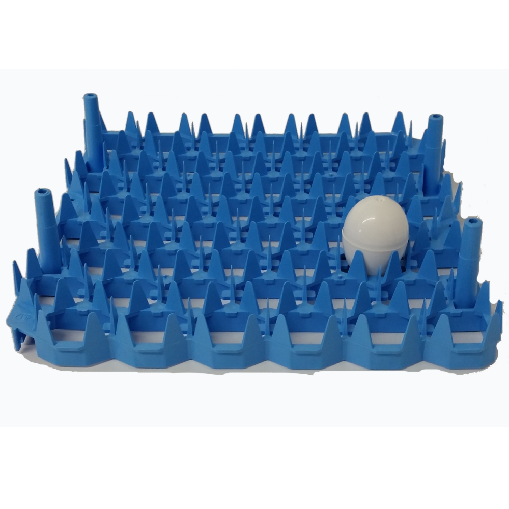 Plastic Universal Egg Tray
