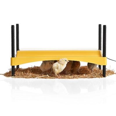 EcoGlow Safety 1200 Chick Brooder